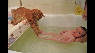 مواقف جميلة ومضحكة للقطط مع الأطفال الصغار