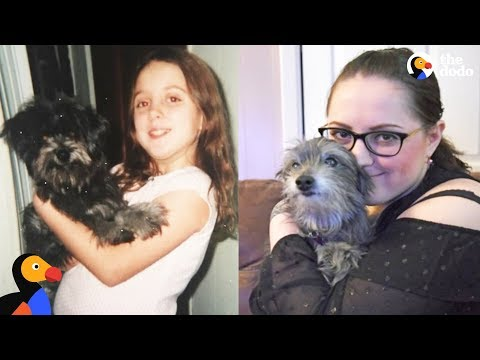 Xxx Mp4 Woman Reunites With Childhood Dog And Adopts Her The Dodo 3gp Sex