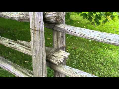 'Evolution of Log Fences' by Eugene Fytche