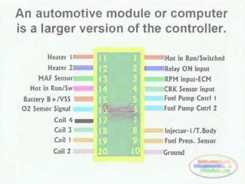 ECM Circuit & Wiring Diagram