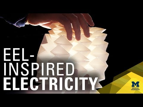 Eel-Style Electricity