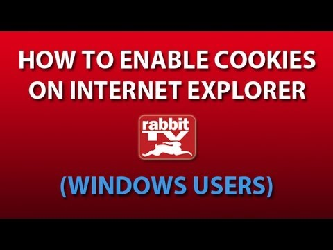 How to Enable Cookies on Internet Explorer (Windows Users)