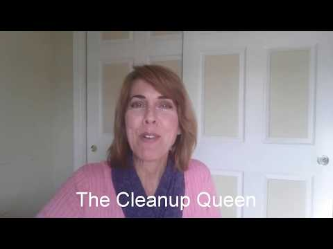 Start Your Own Cleaning Business for $20!