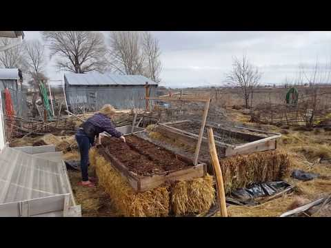 How To Build Raised Beds When Your Soil is Bad