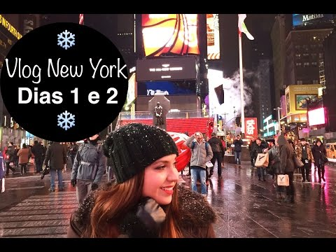 Vlog New York - Dias 1 e 2: Ida, Times Square, Jersey Gardens Outlet | Camis in the Sky
