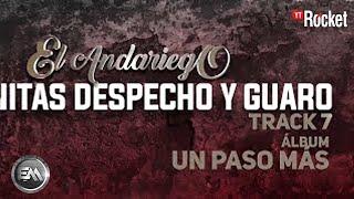 7. Nenitas Despecho & Guaro - El Andariego - Con Letra [Musica Popular]