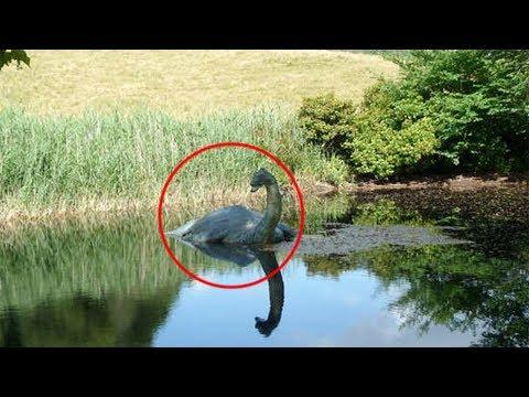Loch Ness Monster Mystery SOLVED