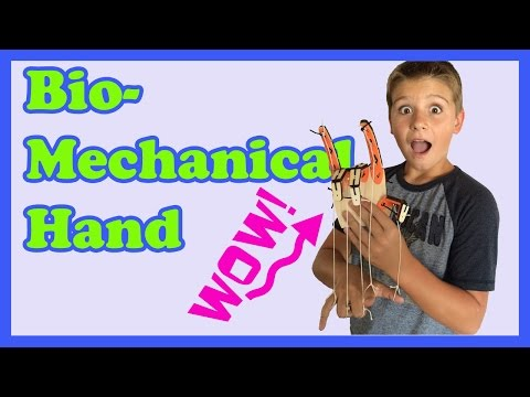 Biomechanical Hand KIDS SCIENCE