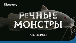 Рыбы-людоеды   Речные монстры   Discovery Channel
