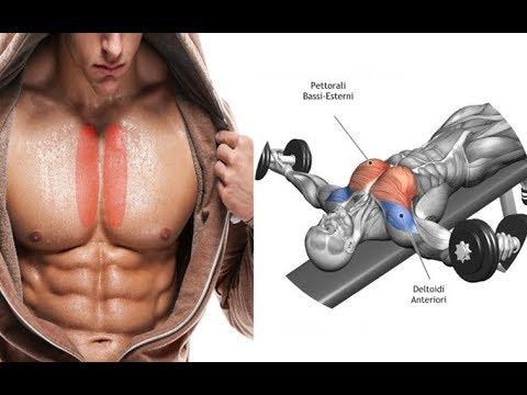 Best Inner Chest Exercises? (How To Build Inner Pecs)
