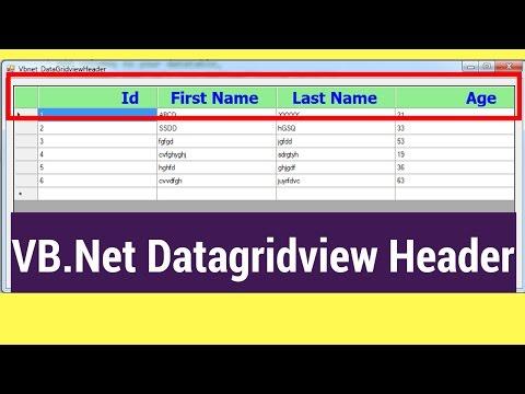 VB.Net Datagridview Header Using Visual Studio [ with source code ]