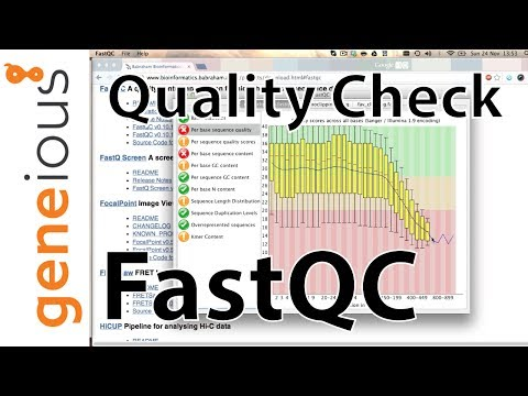 454 NGS data - FastQC Sequence Quality Check (Mitogenome tutorial 2.3)