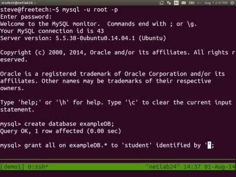 Deploy a Linux Server - Apache Web Server and MySQL
