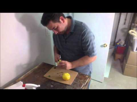 Saving seeds from a heirloom tomato