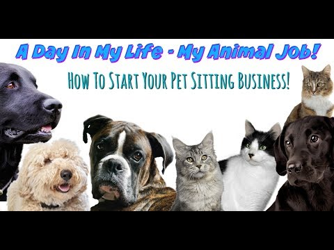 A DAY IN MY LIFE - MY ANIMAL JOB | Pet Sitting & How to Get Started!