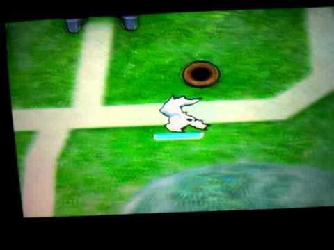 Pokemon rumble blast legendary hunt:The Beggining