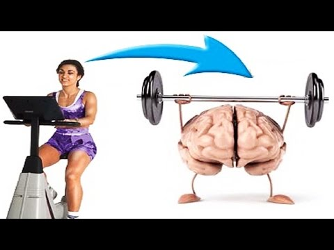 Benefits of Exercise for Your Brain and Memory