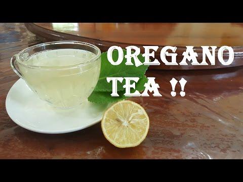 Benefits and how to make oregano tea - Detox & Weight loss