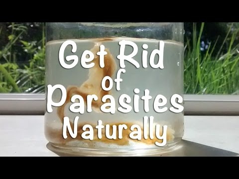 Get Rid of Parasites Naturally w/ Coffee Enemas & Nutritional Balancing