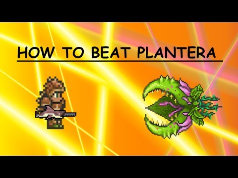 Terraria 1.2.2 Plantera how to defeat and all its drops. EASY BOSSFIGHT WIN