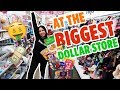 Download   Shopping Spree At The Biggest Dollar Store (and Somebody Grabbed My A$$ 😡) | Mar MP3,3GP,MP4