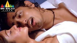 Aata Songs | Muddulata Muddulata Video Song | Siddharth, Ileana | Sri Balaji Video