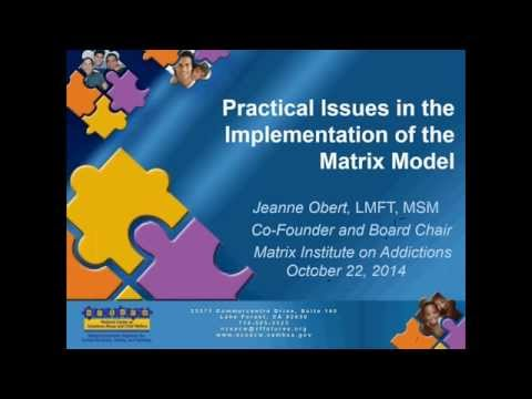 Practical Issues in the Implementation of the Matrix Model