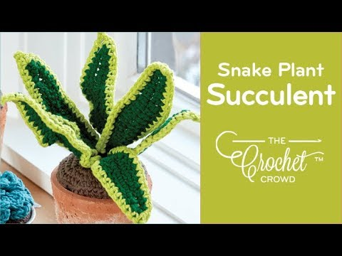 How to Crochet A Snake Plant