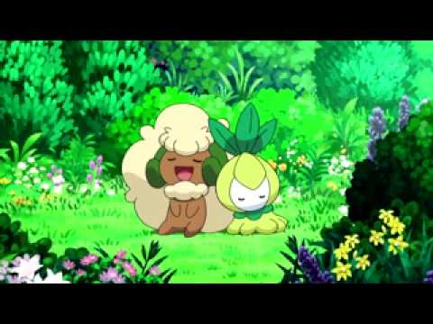 Pokemon Black  My  Friend Code