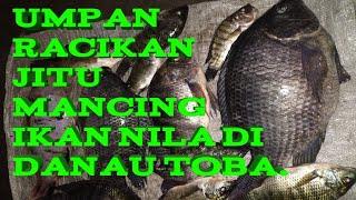 Resep Umpan Ikan Nila Danau Toba