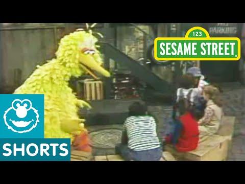 Sesame Street: Guess that Animal with Big Bird