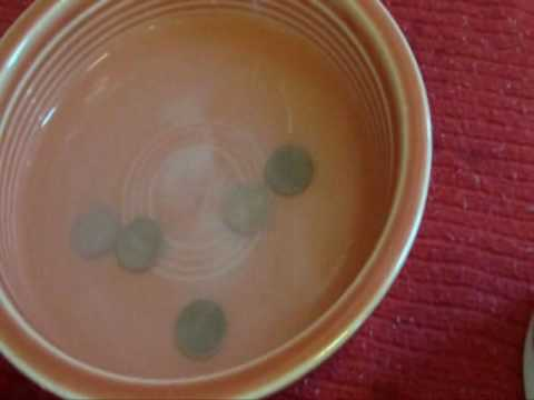 Salt and Vinegar Penny Cleaner