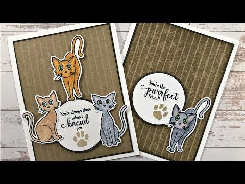 Frisky Felines Card Project