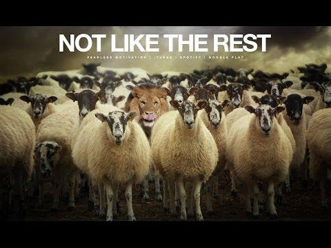 Not Like The Rest - Motivational Video (The Champion Mindset)
