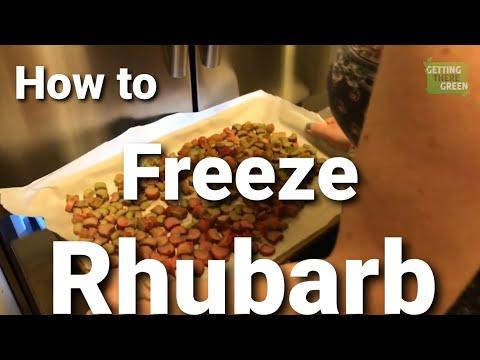 How to dry freeze Rhubarb