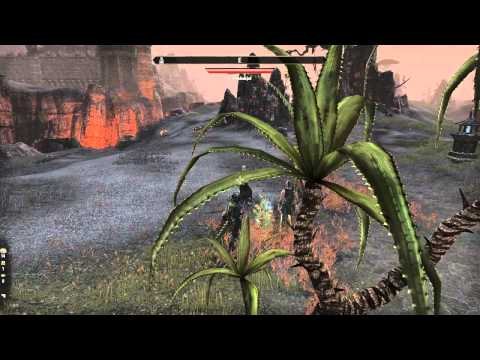 ESO Plagued with bots - now Harvesting.