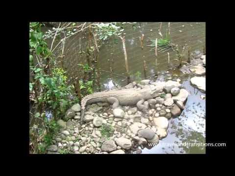 Costa Rica Travel: San Jose, Poas Volcano, Tortuguero, Arenal, Tamarindo
