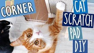 Haku gets a new scratch board   Cat Scratch Pad DIY