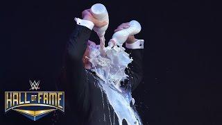 WWE Hall of Fame 2017