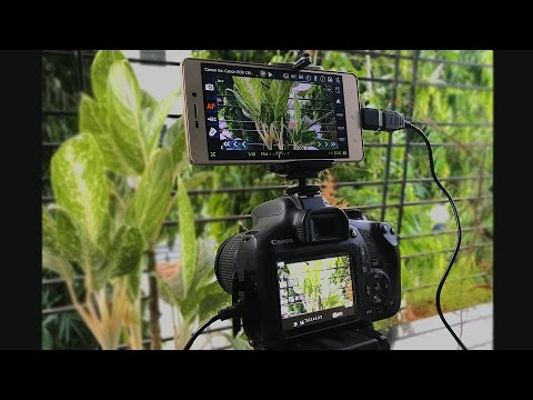 DIY - Use your Smartphone as a DSLR Monitor