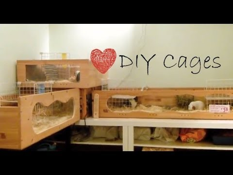 Homemade Guinea Pig Cages | August 2013