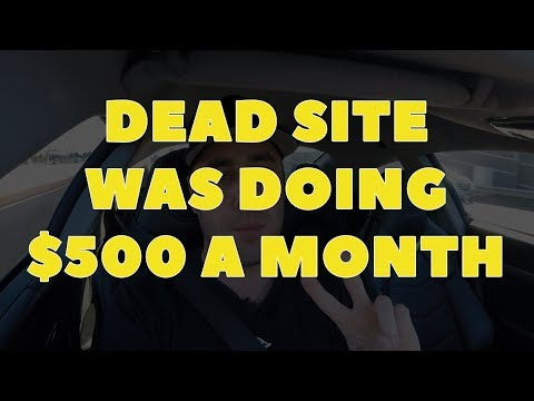 This Stupidly Simple Website Was Doing Over $500 A Month Automatically