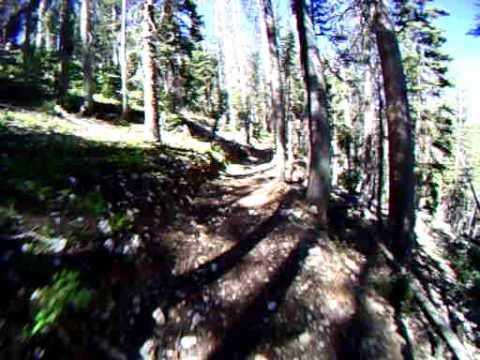 Virgin River Rim Trail descent to Spruces junction