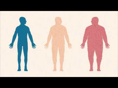 Difference Between Obesity and Overweight