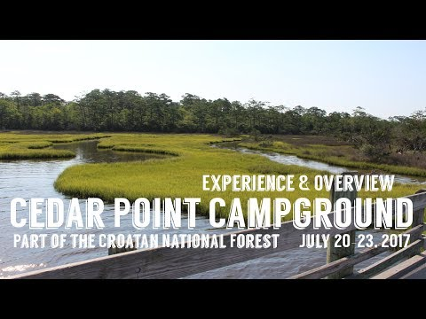 Cedar Point Campground Overview & Review | Croatan National Forest | July 20-23, 2017