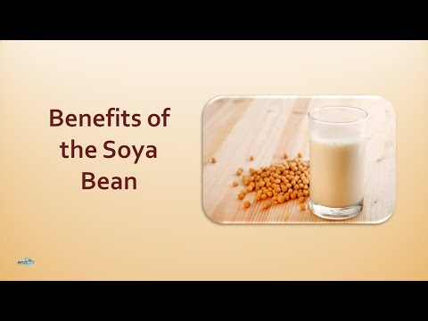 Benefits of the Soya Bean | Soya Beans the Most Nutritious Foods in the World
