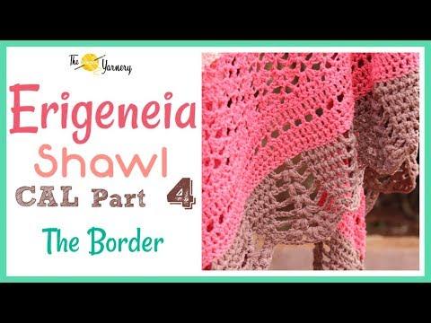 Erigeneia Shawl Cal Part Four The Border64arj Watch Best Video