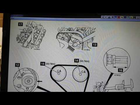 Ford Focus Timing / Cam Belt Diagram