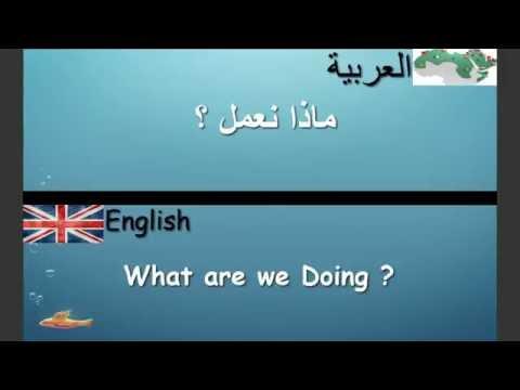Lesson 4 الدرس (English/Arabic ) Learn English/Arabic تعلم اللغة الإنجليزية والعربية