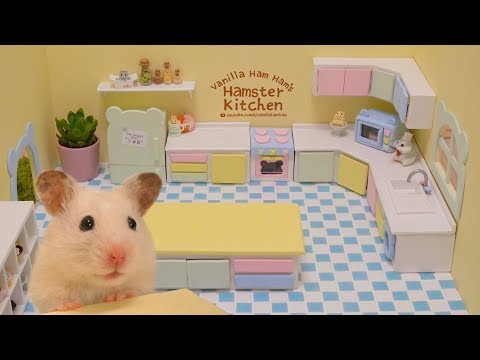 Building the Hamster Kitchen | Part 1